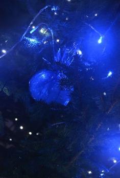 2016 Vánoční strom